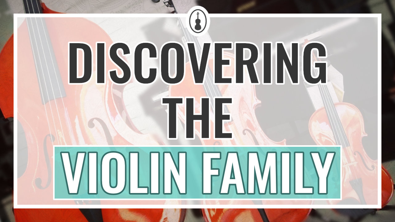 Discovering the Violin Family