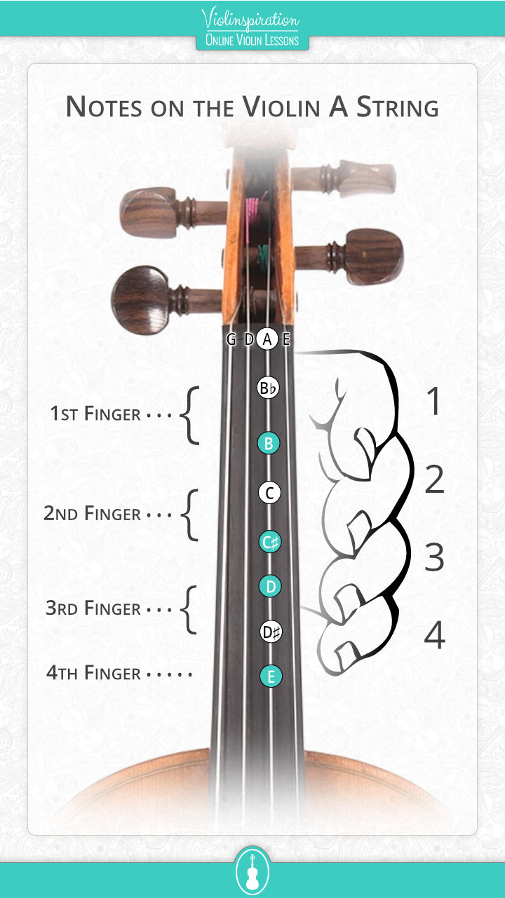 Notes on the Violin A String - fingerboard