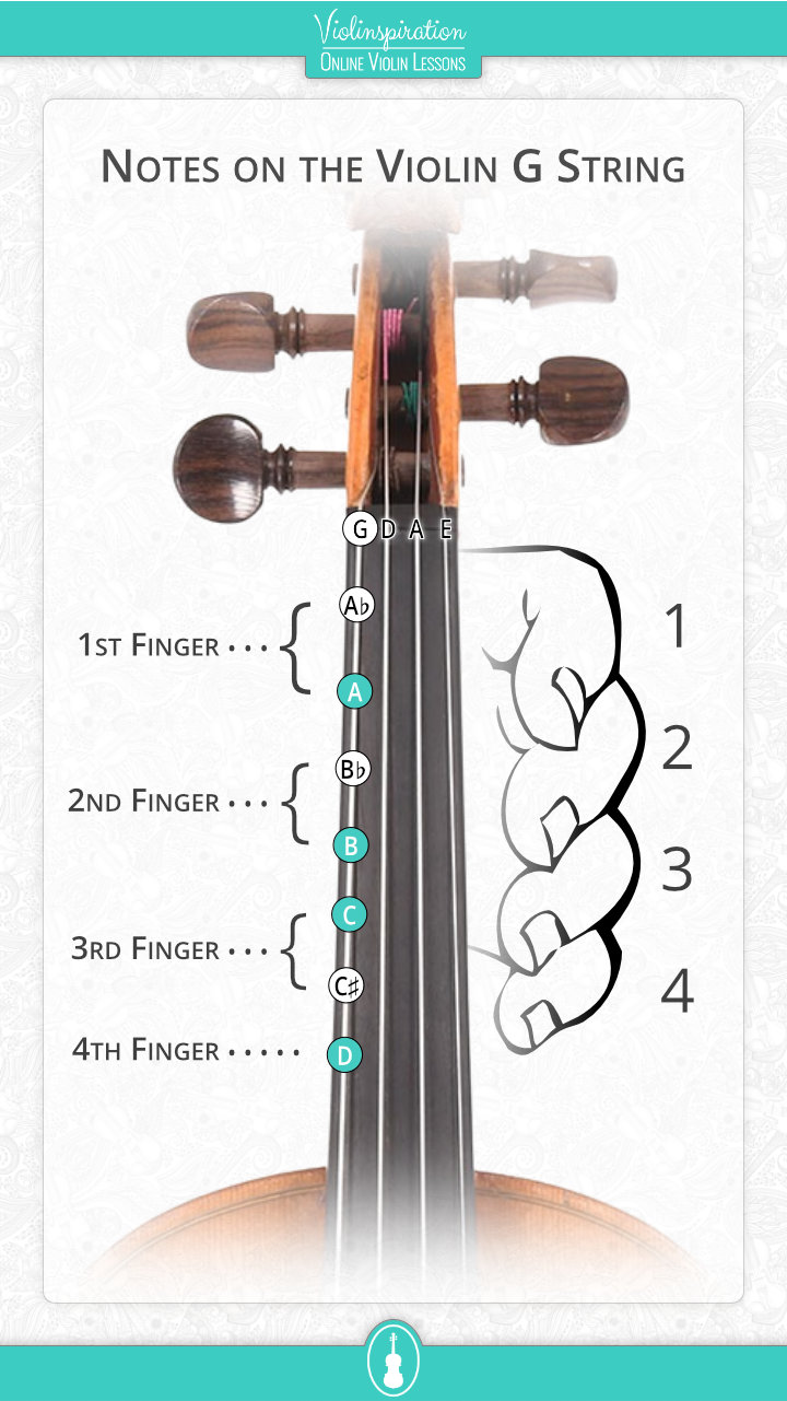 Notes on the Violin G String - fingerboard