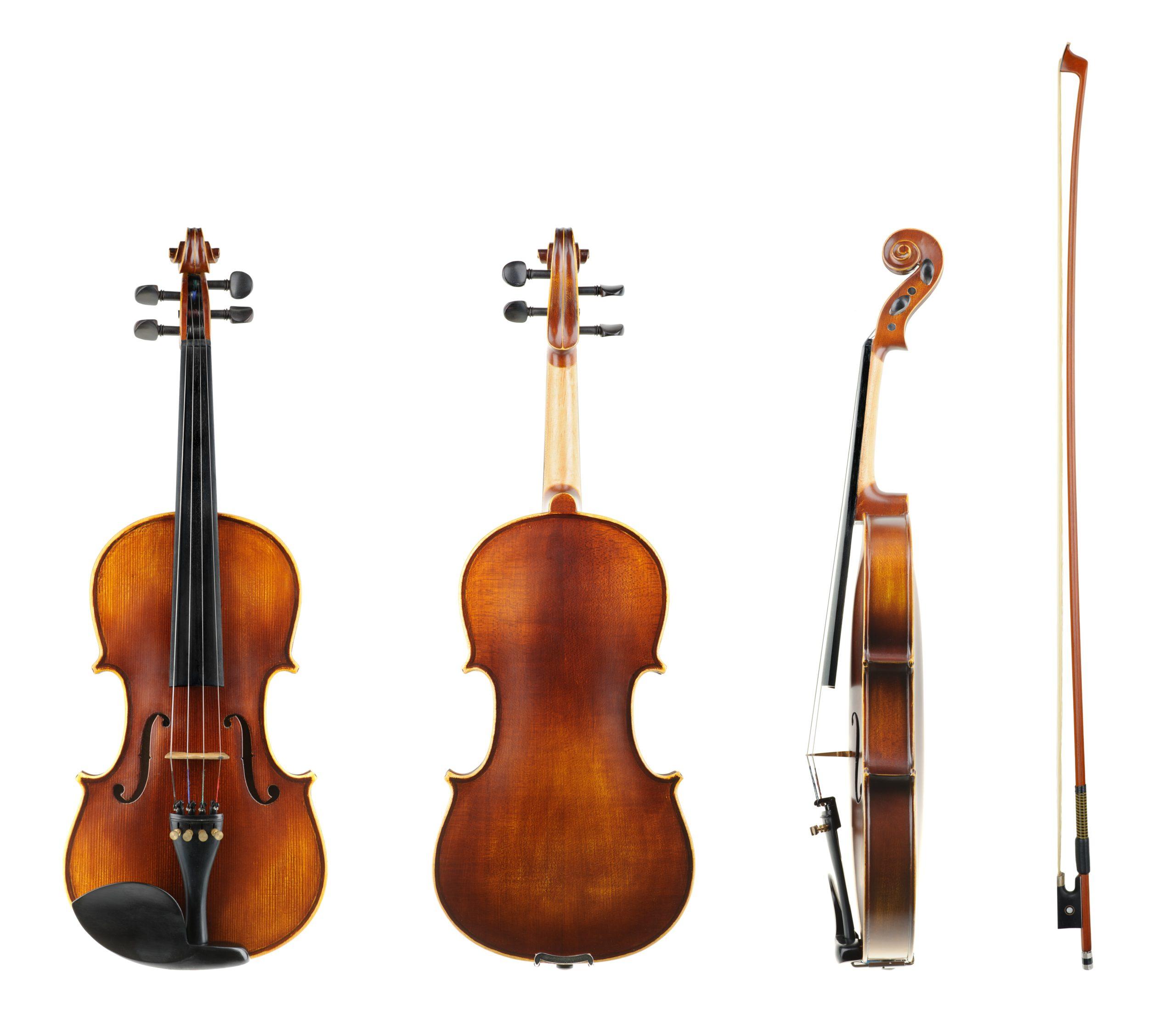 The-Most-Popular-Violin-Types-Modern-Violin