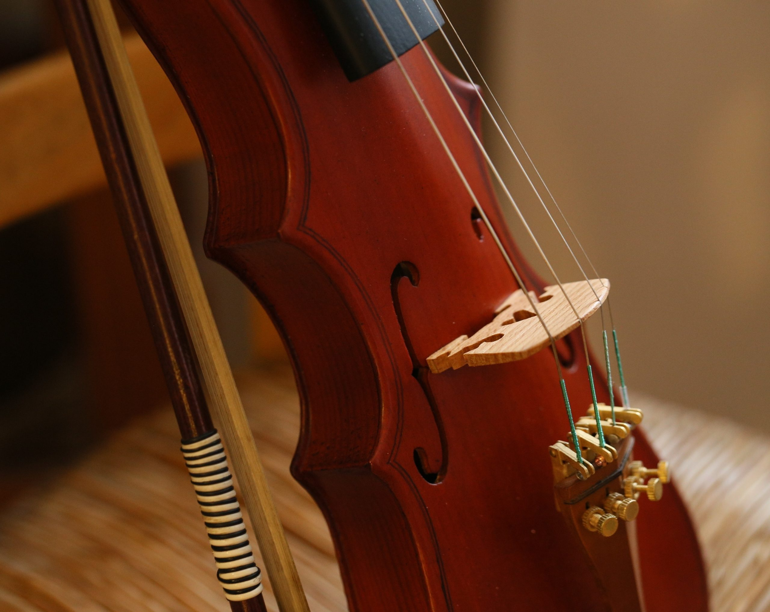 The-Most-Popular-Violin-Types-Pochette-Closeup-on-the-Sounbox