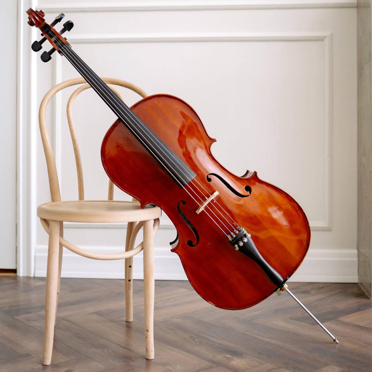 The Violin Family - Cello