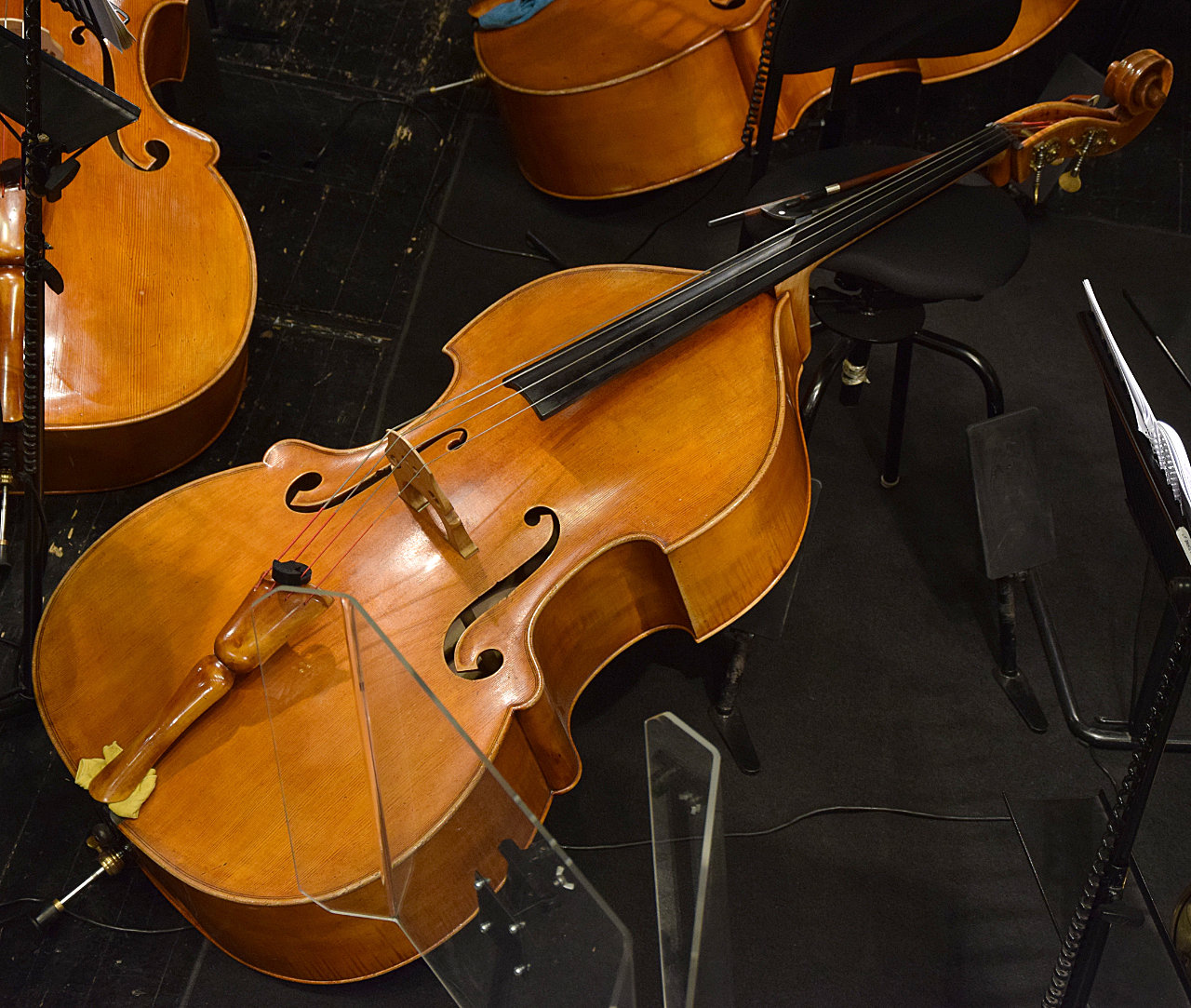 The Violin Family - Double Bass