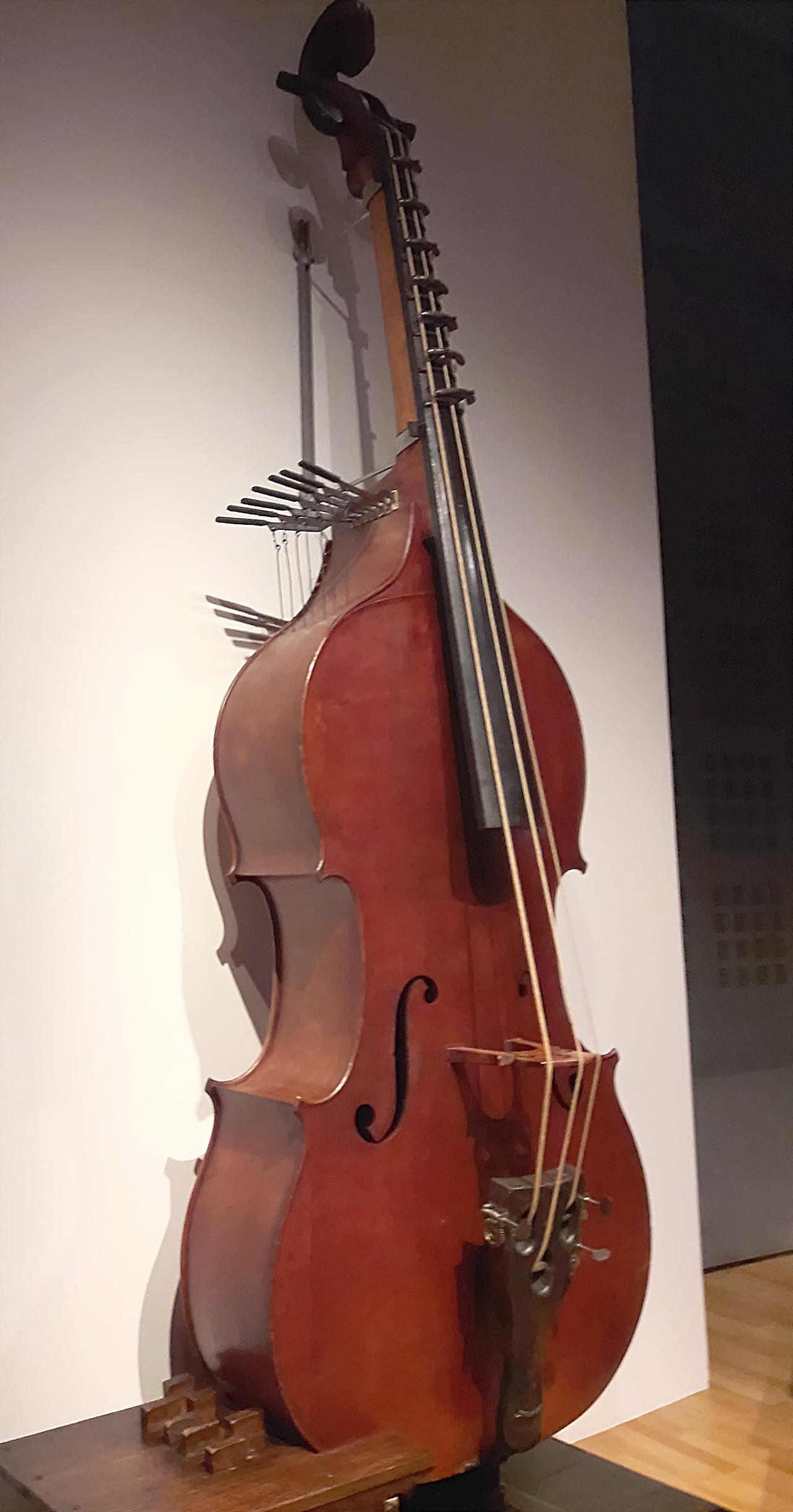 The Violin Family - Octobass