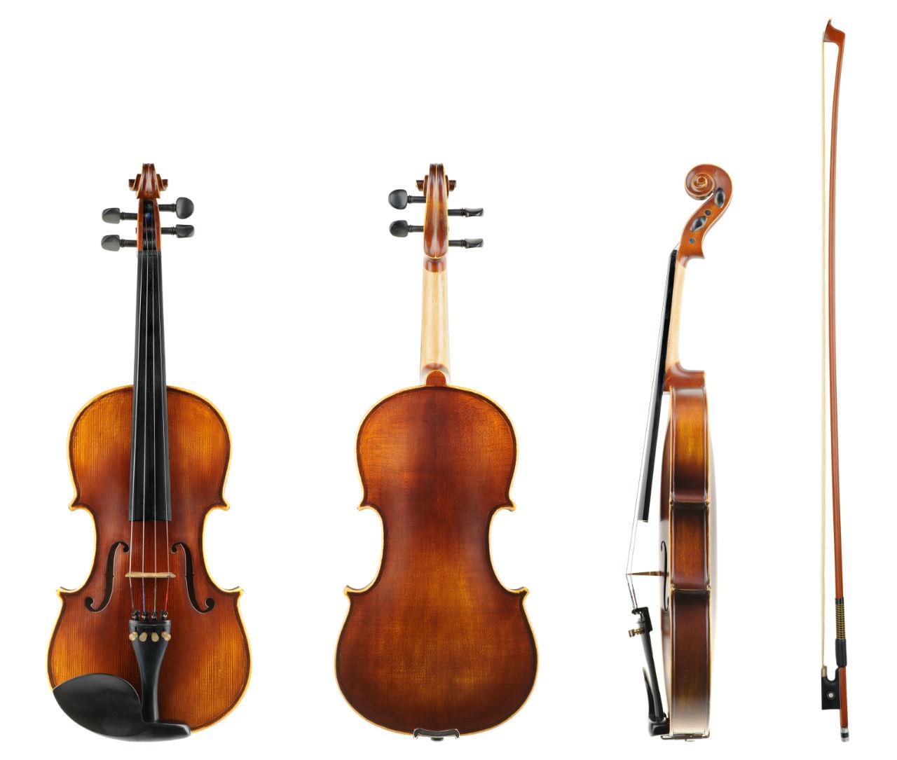 The Violin Family - Violin