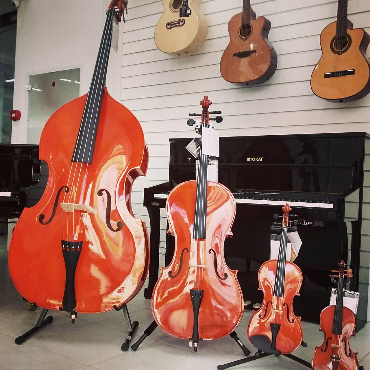 The Violin Family