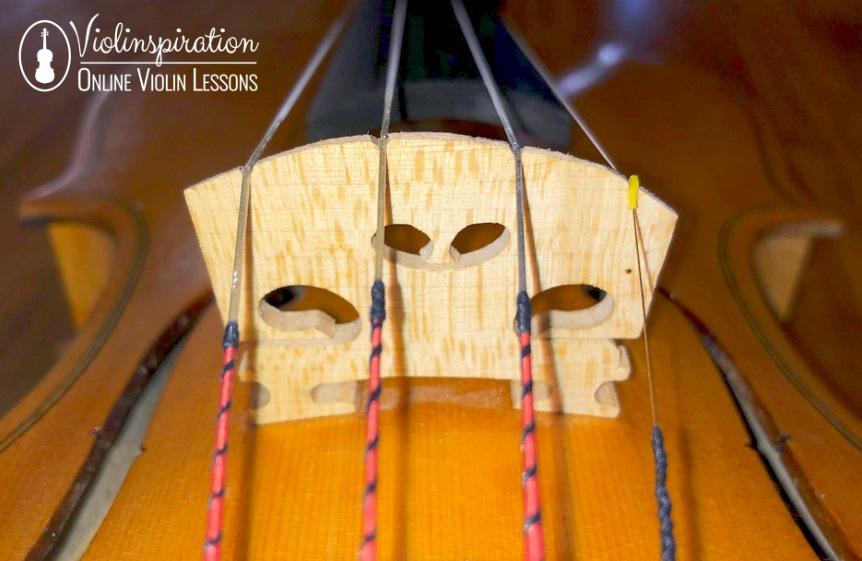 Violin Made Of - Violin Bridge