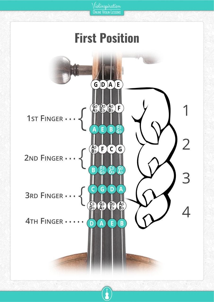 finger placement on violin - first position fingering